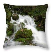 Glacier Sources Throw Pillow