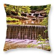 Glade Creek 002 Throw Pillow