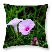 Glades Morning Glory Throw Pillow