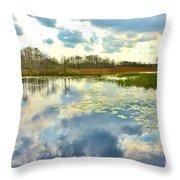 Glades Reflective 2 Throw Pillow