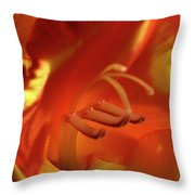 Gladiola Interior Throw Pillow