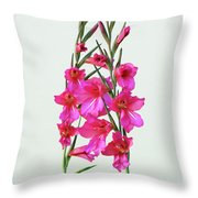 Gladioli Byzantinus In Love Throw Pillow