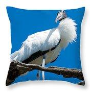 Glamorous Wood Stork Throw Pillow