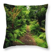 Glanleam, Co Kerry, Ireland Pathway Throw Pillow