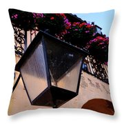 Glass Light Housing With Red Flower Architecture In Saint August Throw Pillow