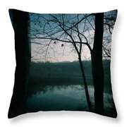 Glass River Throw Pillow