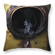 Glass Tears Throw Pillow