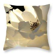 Gleaming White Throw Pillow