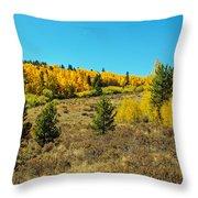 Glen Of Color Throw Pillow