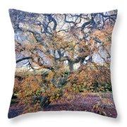 Glen Park Manor Garden Throw Pillow