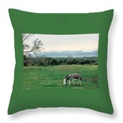 Glenbeigh Ireland Throw Pillow