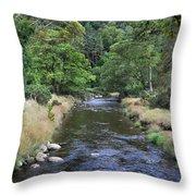 Glendasan River. Throw Pillow