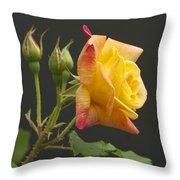 Glenn's Rose Throw Pillow