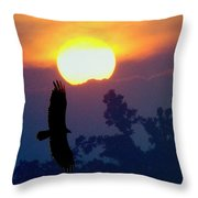 Gliding By The Sun Throw Pillow