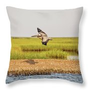 Gliding Over A Shell Island Throw Pillow