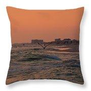 Gliding The Beach Throw Pillow