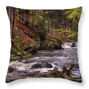 Glimpses Of Spring  Throw Pillow