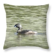 Glistening Delight Throw Pillow