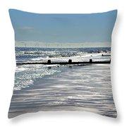 Glistening Shore Throw Pillow