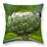 Globe Artichoke Throw Pillow
