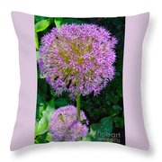 Globe Thistle Flowers Throw Pillow