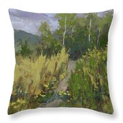 Gloomy Day Hike Throw Pillow by David King