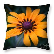 Gloriosa Daisy Throw Pillow