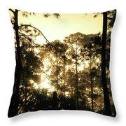 Glorious Dawn Throw Pillow