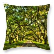 Glorious Entrance Tomotley Plantation South Carolina  Throw Pillow