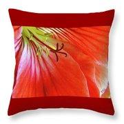 Glorious Geranium Throw Pillow