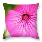 Glorious In Pink Throw Pillow