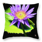 Glorious Lily Throw Pillow