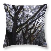Glorious Live Oaks With Framing Throw Pillow