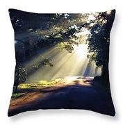 Glorious Morning Throw Pillow