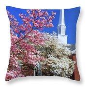 Glorious Sunday Morning In Spring Throw Pillow
