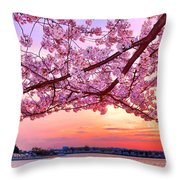 Glorious Sunset Over Cherry Tree At The Jefferson Memorial  Throw Pillow