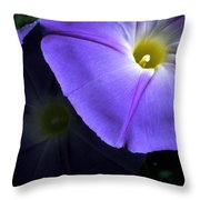 Glory In The Morning Throw Pillow