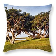 Glory In The Morning Pntb Throw Pillow