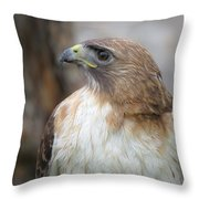 Glory Of It Throw Pillow