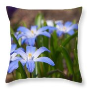 Glory Of The Snow 2 Throw Pillow