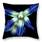Glory Of The Snow Blue Giant Throw Pillow