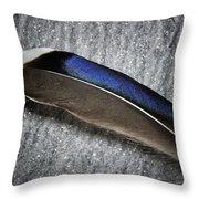 Glossy Iridescence  Throw Pillow