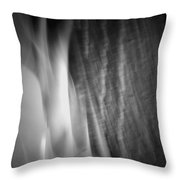 Glow Of The Flame B N W Throw Pillow