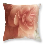 Glow Shabby Cottage Flower Sunlit Throw Pillow