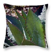 Glowing Agave Throw Pillow