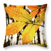 Glowing Beech Leaf Branch Throw Pillow