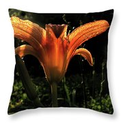 Glowing Day Lily Throw Pillow