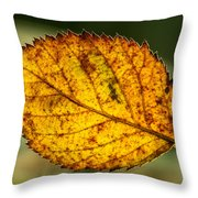 Glowing Fall Leaf Throw Pillow