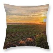 Glowing Fields Of Pine Island Throw Pillow