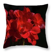 Glowing Flower In The Dark Throw Pillow